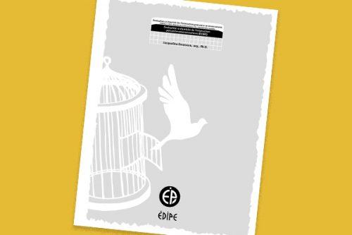 Instrument - Évaluation à domicile de l'interaction personne environnement (ÉDIPE)