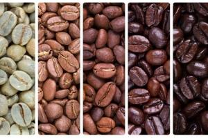 Avenir des cafés-bistrots L'Espoir : mousser ressources humaines et marketing