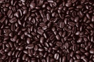 Coopérative Just Us! Coffee Roasters - Un plan de marketing pour la division des cafés-bistrots