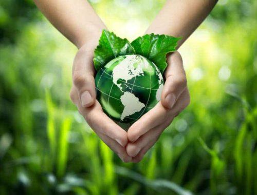 Sauver la planète : entre passion et quotidien