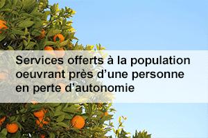 651-services-offerts-personne-perte-autonomie