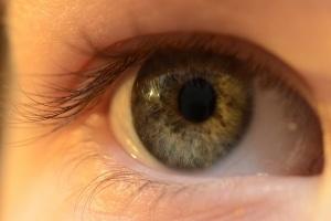 477-challenge-kaggle-retinopathie-diabetique