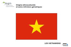 Origine ethnoculturelle et soins infirmiers gériatriques : Les Vietnamiens