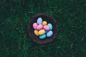 L'exercice de l'œuf – une approche ludique des enjeux de base du management (NP)