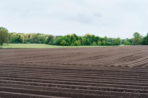 Guide d'aide à l'implantation des zones tampons pour l'atténuation des transferts de contaminants d'origine agricole