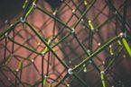 La Vie du Réseau : Faites évoluer votre réseau de relations