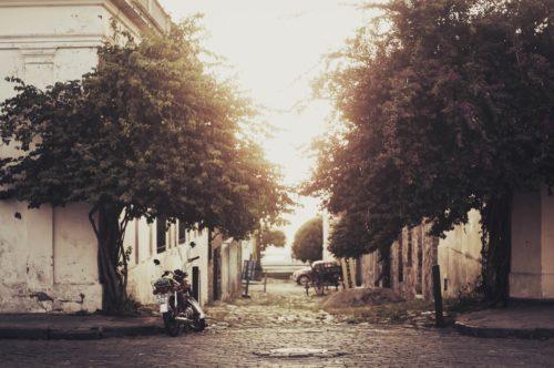 Dix Mille Villages en péril : le pionnier du commerce équitable peut-il survivre à la crise économique?