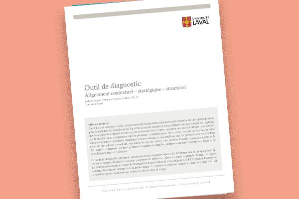 Outil de diagnostic : Alignement contextuel – stratégique – structurel